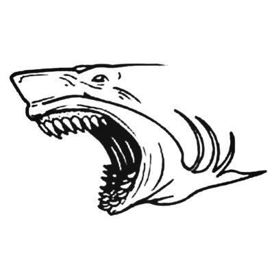 Blue.Shark