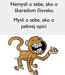 kacenka1jb